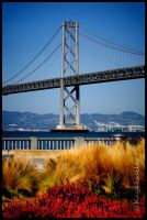 Across the Bay by kayaksailor