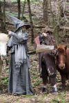 Radagast and Gandalf Cosplay by ChronaCosplay