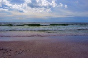 Red Tide Beach Stock Photo Premade DSC 0581 by annamae22