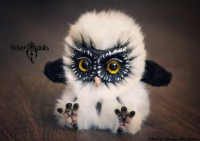 Owl Sowush 7 by Flicker-Dolls