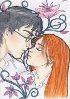 Harry and Ginny by miriamartist