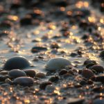 golden tide by m-lucia