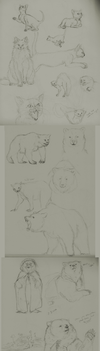 Sketchdump - Cats and Bears by TirnelRuin