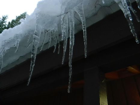 Tasty tasty icicles....mmm by The-Lover-Of-Life