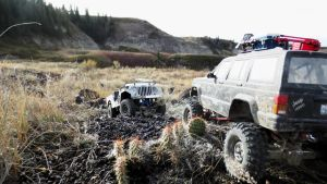 Sunday in Drumheller - Two Jeeps and a Cactus by BobTheWrench