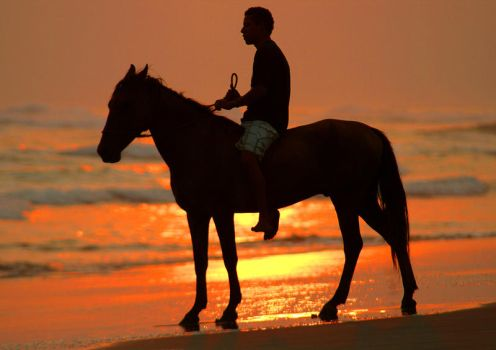 sunset horseback riding by shanok