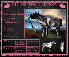 ..:: WMS Chico's Enzonian Diamond - 124.5 pts ::.. by Starcather9