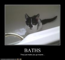 King Bath Insanity LOLCATS by SJArt117
