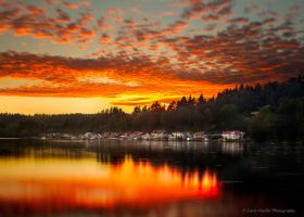 Lake Washington Sunset by LarryGorlin