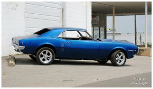 Cool Blue Pontiac Firebird by TheMan268