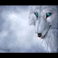 Ice eyes by ArtemisA-wolf