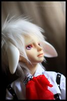 Is it a white rabbit - 5 by chibi-lilie