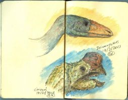 Deinonychus and Citipati by maniraptora