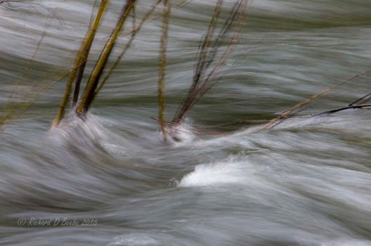 Merced River, Motion by rbeebephoto