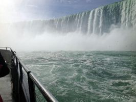 Into the Falls by Loulou13