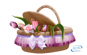 Floral basket - PNG by lifeblue