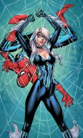 Black Cat and Spiderman - Colors by Brianskipper