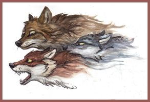 Three Wolves by Lupuna