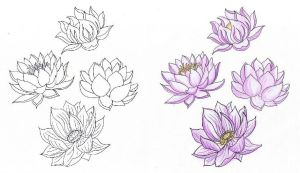 lotus for emo by rosinger