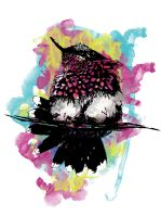Watercolour Hummingbird by olenka168
