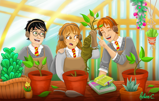 Harry Hermione Ron and the Mandrake by Adline-c