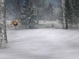 Winter Background 1 by BlackStock