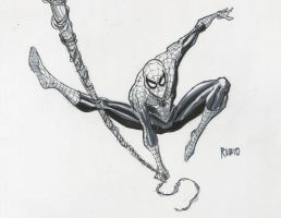 Spider-man commission by BobbyRubio