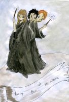 harry ron and hermione by zebree