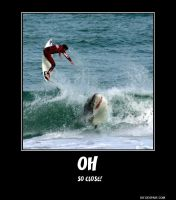 Shark Attack Demotivational by ShamanGirl1