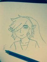 Another Smug Looking Link by 6Princess6Bleach6