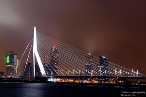 Rotterdam Bridge by Tasha0228x