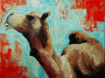 Camel by moonaniteone