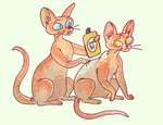 sphynx cats w/ sunburns by Alyssizzle-Smithness