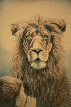 Lion by Verenth