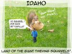 Because the squirrels here should be famous... by LynSmall