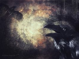 Huginn ok Muninn by Silvana-Massa-Art