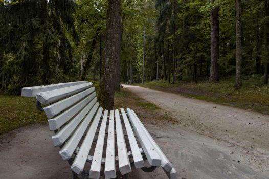 Lonely bench by AngelInTheHeart