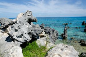 Bermuda 042 by FairieGoodMother