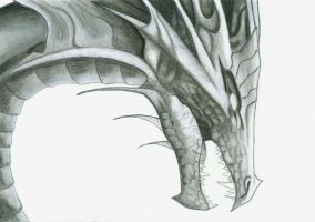 Dragon Head by silverdragon686
