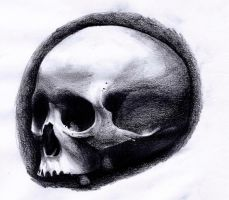 Realistic skull by Billcmf