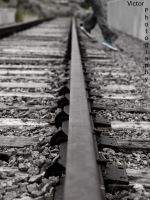 Tracks by phross