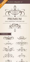 Premium Calligraphic Design Set by moccadsgn