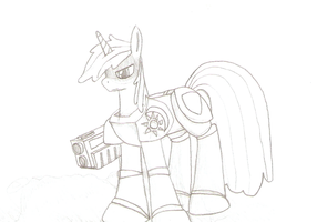 Shining Armor: Emperial Captain by TheWanderer93