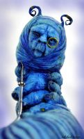 blue caterpillar face by SutherlandArt