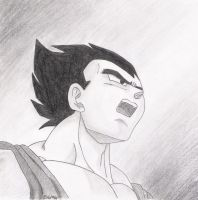 Vegeta Shocked by pulsarr