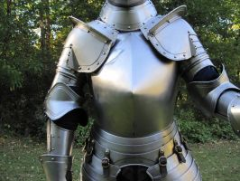 German Tapulbrust Armor 11 by Andaltno
