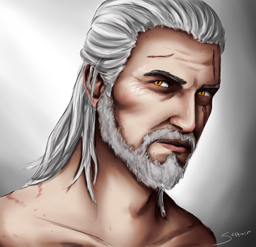 Geralt of Rivia - The Witcher by Seltiair