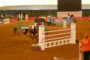 Showjumping LII by Fobtrix-Stock