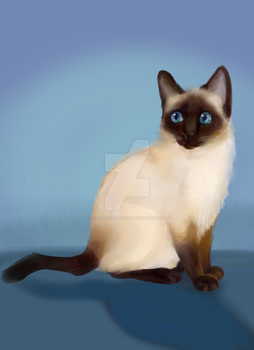 Cat Painting Practice 1 by cosmocatcrafts