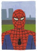Spiderman by Teagle